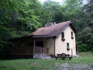Nantahala Gorge Vacation Rental