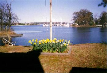 View of Miles River Yacht Club